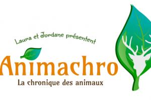 La faune sauvage en Mayenne