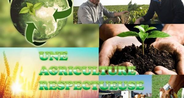 Pourquoi une agriculture respectueuse de la création ?